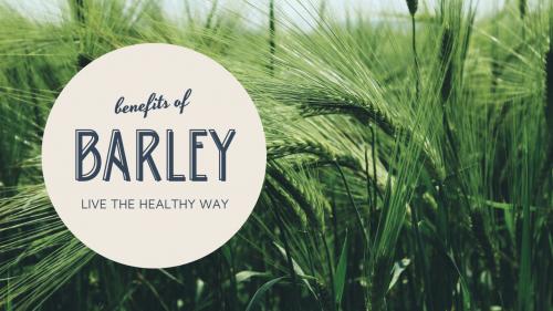 barleySlide